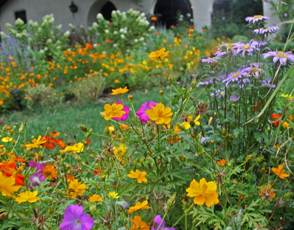 plant a landscape to feed pollinators.....