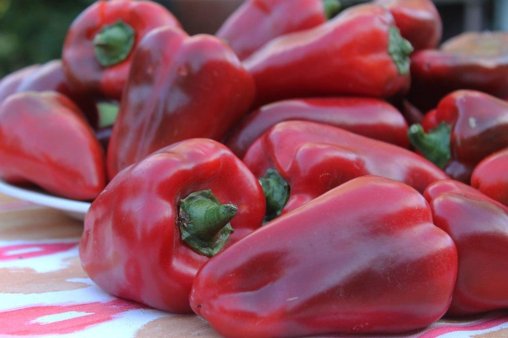 IMG_1584-1-red-pepper-2017