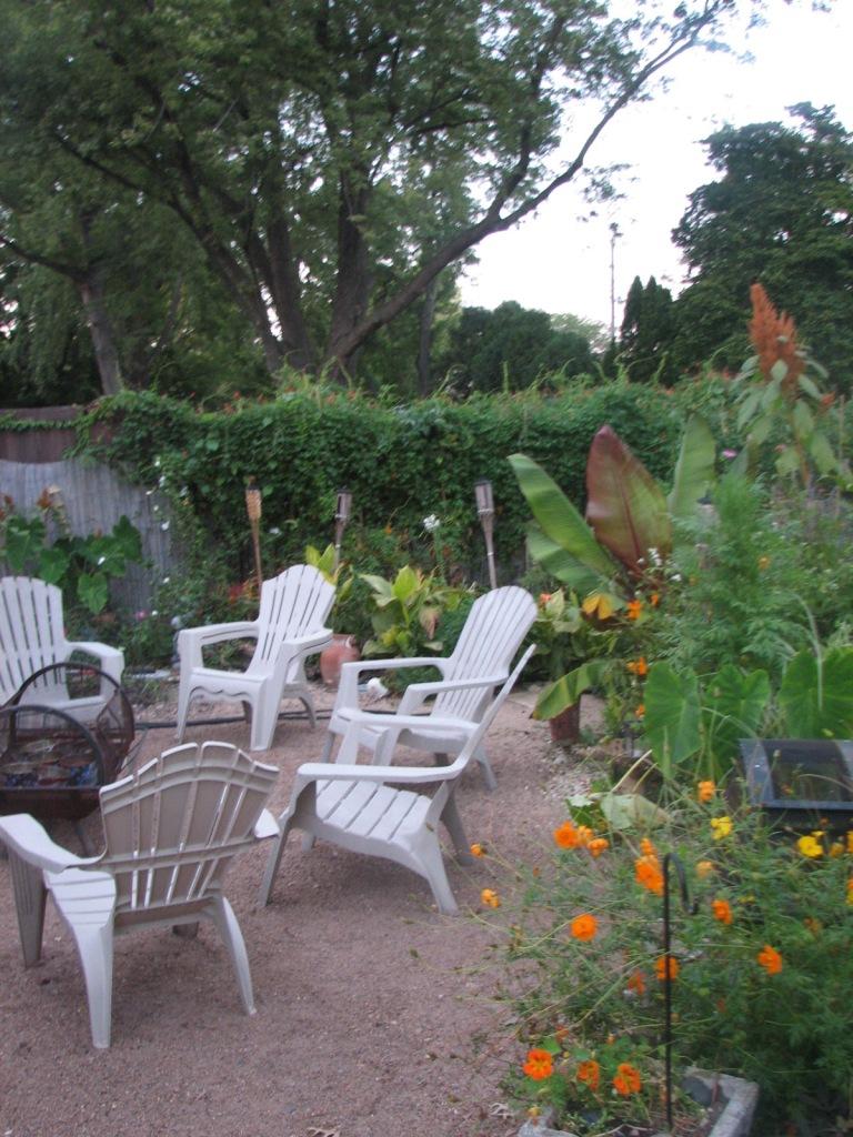 2010 garden pictures 529