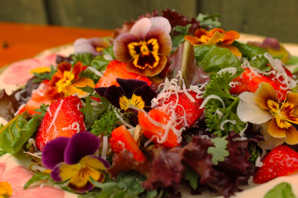 spring salads include chard, parsley, strawberries, red lettuce, baby red russian kale, and pansy flowers